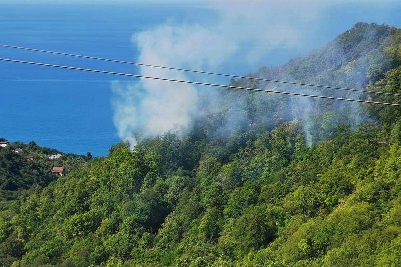 В Сочинском нацпарке к тушению пожара привлекли вертолет