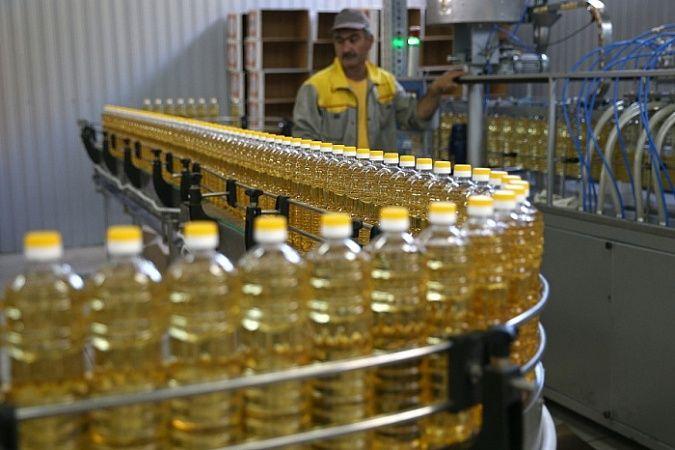 План нацпроекта по экспорту агропродукции перевыполнили в Краснодарском крае