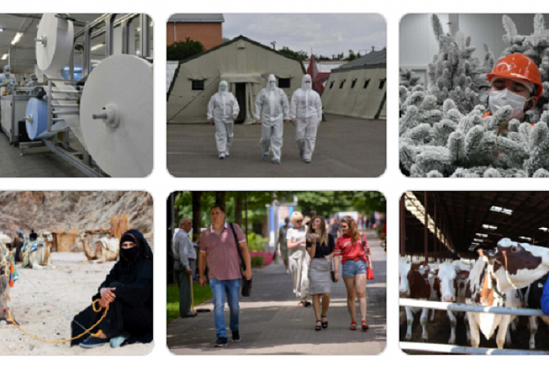 Выставка работ кубанских фотокорреспондентов «Золотой объектив» откроется в музее им. Коваленко